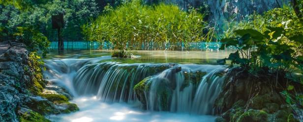 slapovi-milke-trnine.jpg